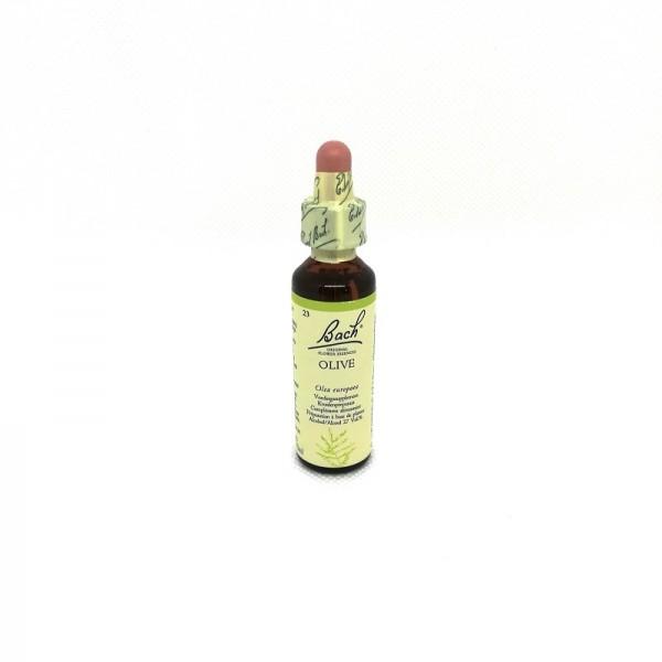 Olive - Olive